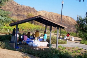 Photos by Shana LiVIGNI preserving history while making wine»Members of the Historical Society of Crescenta Valley work in the shade of a tent with the burned mountains as a somber backdrop.