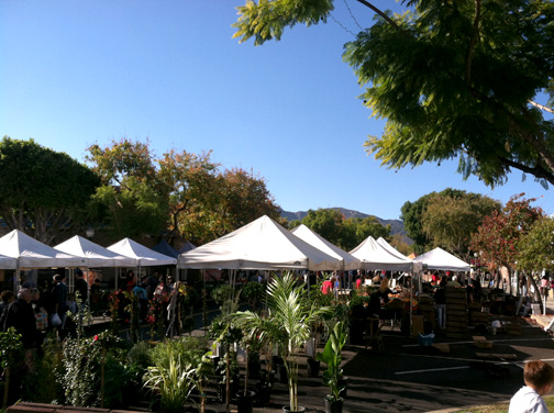 What a scenic Montrose Harvest Market!