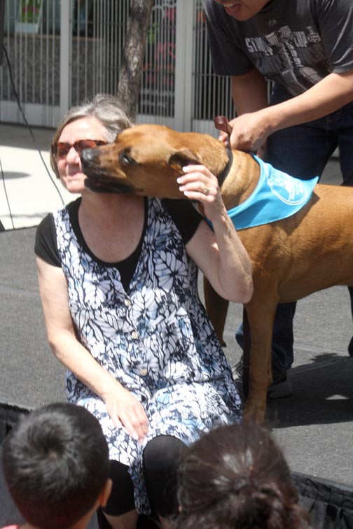 Glendale Humane Society president Alyce Russell got some love from a four-legged guest.