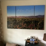 A panoramic photo of Delfina's Vineyard hangs in the room.