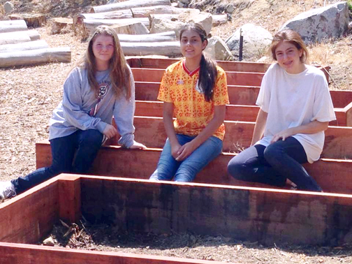 Local Girl Scouts Build Friendship with the Rosemont Preserve