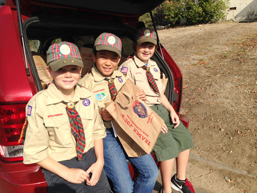 Webelos ll Den – Webelos (from left) Charlie Ward, Joshua Lee and Freddie Ireland.