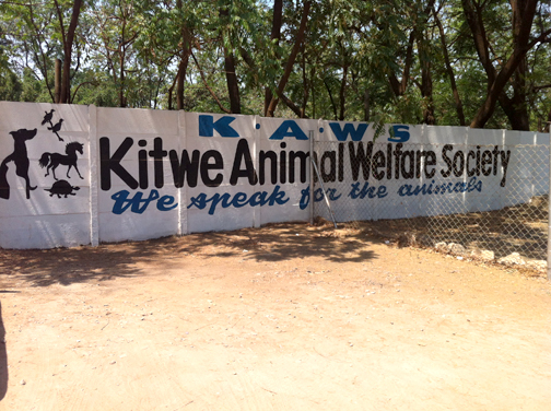 The outside of Kitwe Animal Welfare Society