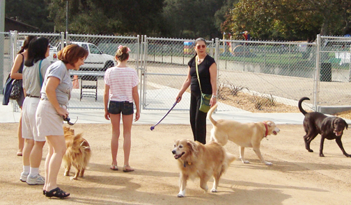 File photo The popular CV Dog Park is celebrating its third anniversary on Oct. 17. The celebration will include several dog-friendly booths, presentations and giveaways.