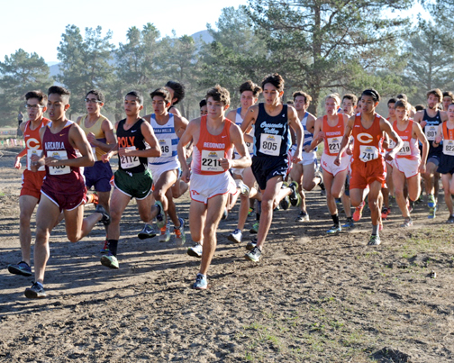Photos by Leonard COUTIN The runners tackled a muddy track at Saturday's cross-country prelims in Riverside. Arcadia's Phillip Rocha took the win running 14:44.00.