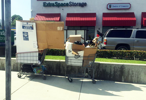 Photo by Pat KRAMER Without treatment, those afflicted with mental illness can find themselves on the street using shopping carts to transport their belongings. The film 'Voices' takes a look at how three families are coping with loved ones who have been diagnosed with mental illness.
