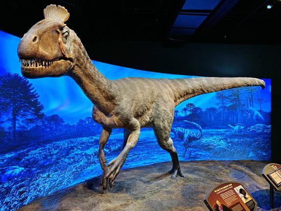 NO-1-Cryolophosaurus-WEB.jpg