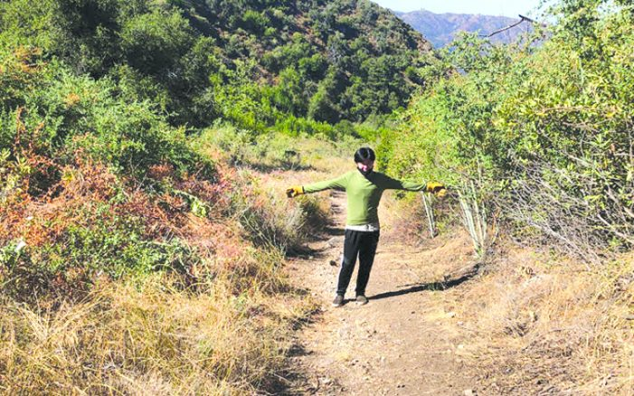 Eagle Scout Clears the Way for Hikers